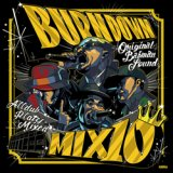 100% DUB PLATES MIX CD 【BURN DOWN MIX 10】