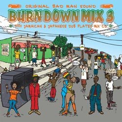 画像1: 100% DUB PLATES MIX CD 【BURN DOWN MIX 3】