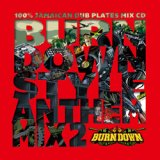 "100% DUB PLATES MIX CD ""BURN DOWN STYLE"" 【-ANTHEM MIX 2-】"