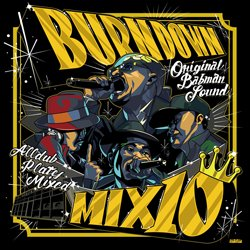 画像1: 100% DUB PLATES MIX CD 【BURN DOWN MIX 10】